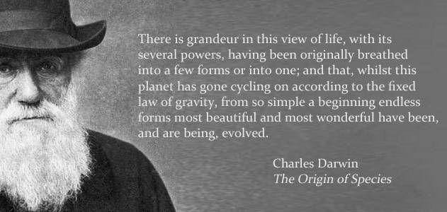 Charles-Darwin-1880-631 copy