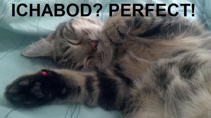Ichabod Perfect