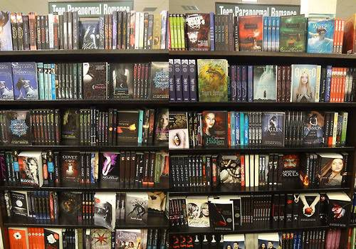 Teen Bookshelf