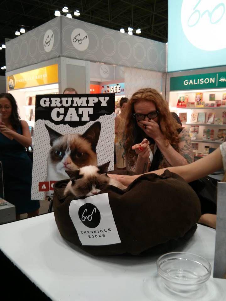 Liberty meets Grumpy Cat, is not actually grumpy.