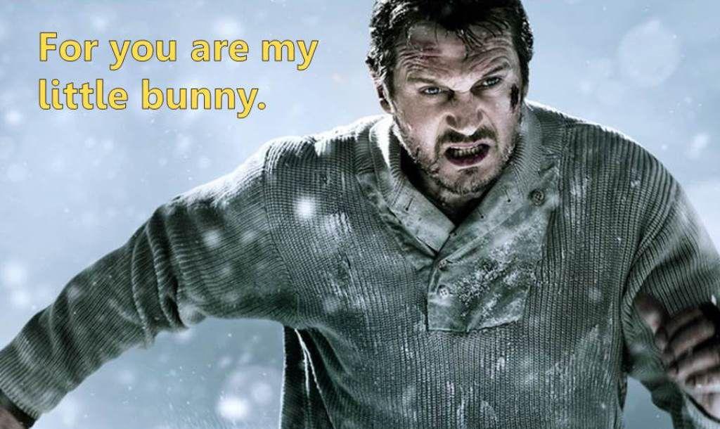 Liam Neeson as Runaway Bunny 3