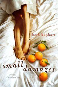 Small Damages Beth Kephart Cover