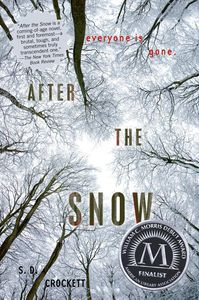 After the Snow S D Crockett Cover