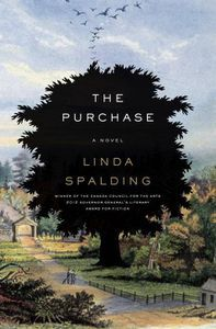 The Purchase Linda Spalding Cover