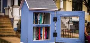 Open Little Free Library