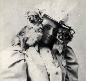 Edith Wharton with dogs on her shoulders