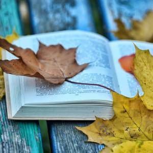autumn book open leaves
