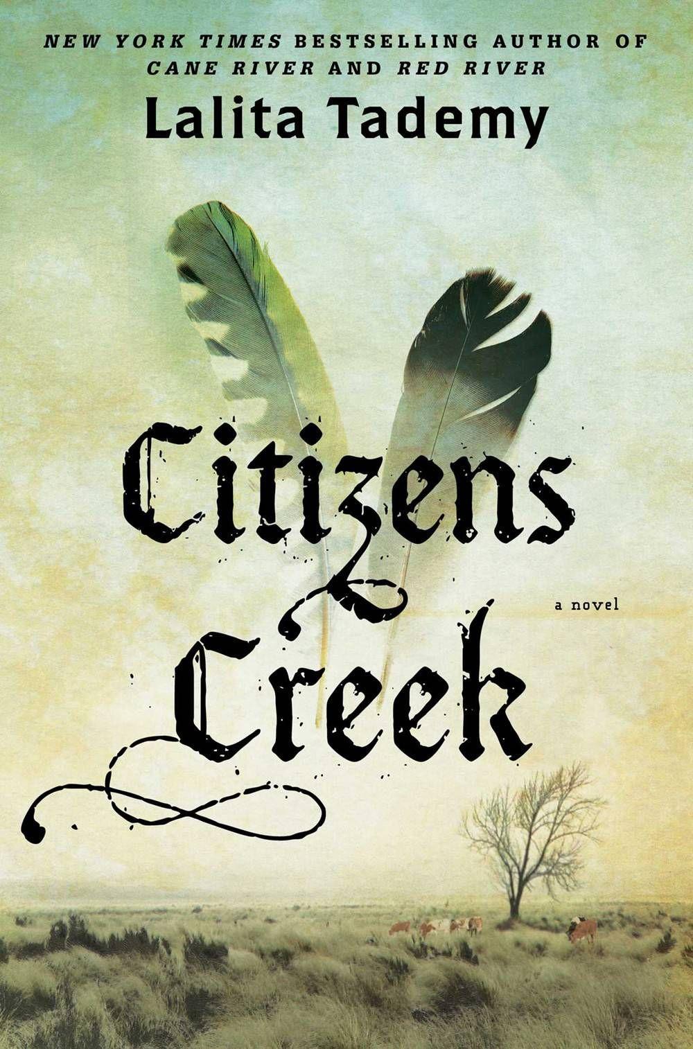 citizens creek - lalita tademy