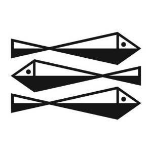 FSG publisher logo design