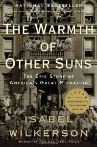 cover of warmth of other sons black history books