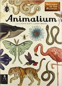 Animalium by Jenny Broom and illustrated by Katie Scott