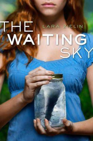 the waiting sky by lara zeilin