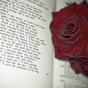 Most beautiful love poems for him