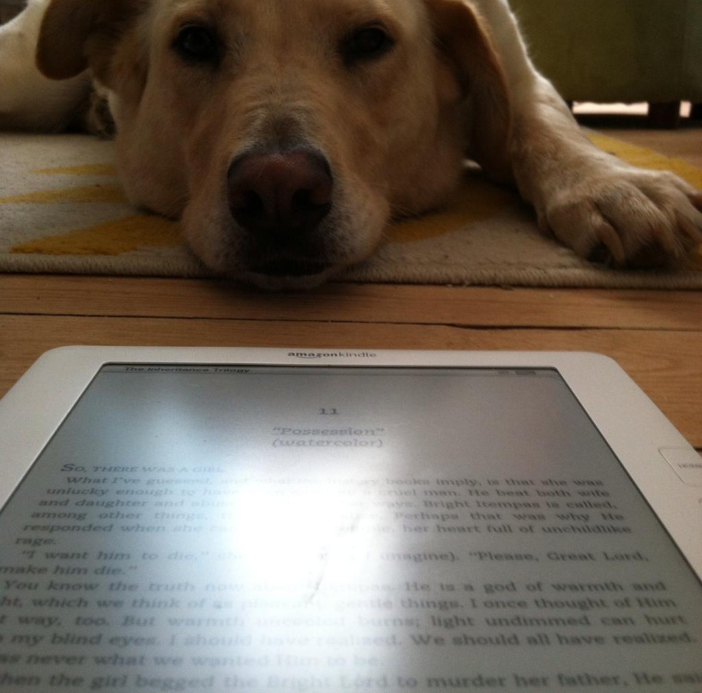 AJ Dog book