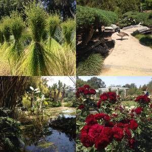 Huntington-Gardens-Collage
