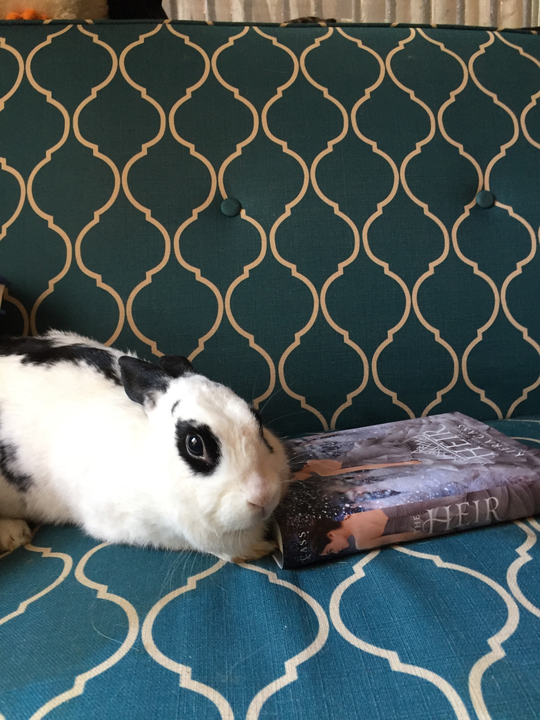 eric bunny