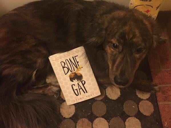 justina dog book