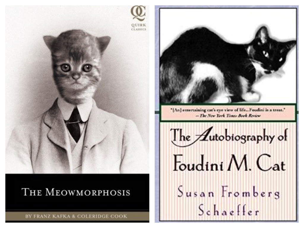 meowmorphosis autobiography