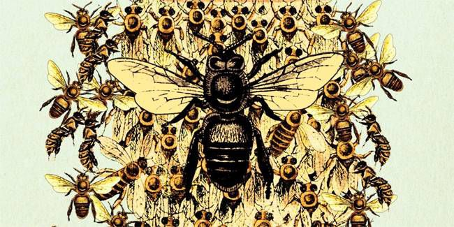 the bees laline paull