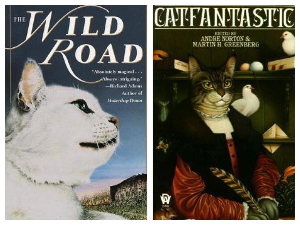 wild road cat fantastic