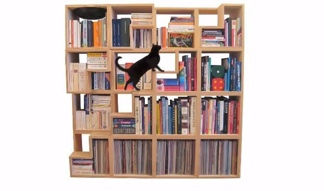 cat library 1