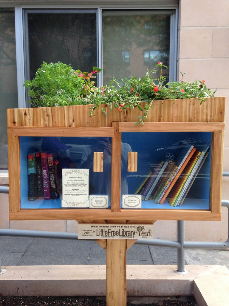 Little Free Library NYC