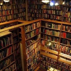 7 Cozy Chicago Bookstores