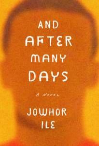 cover of and after many days jowhor ile