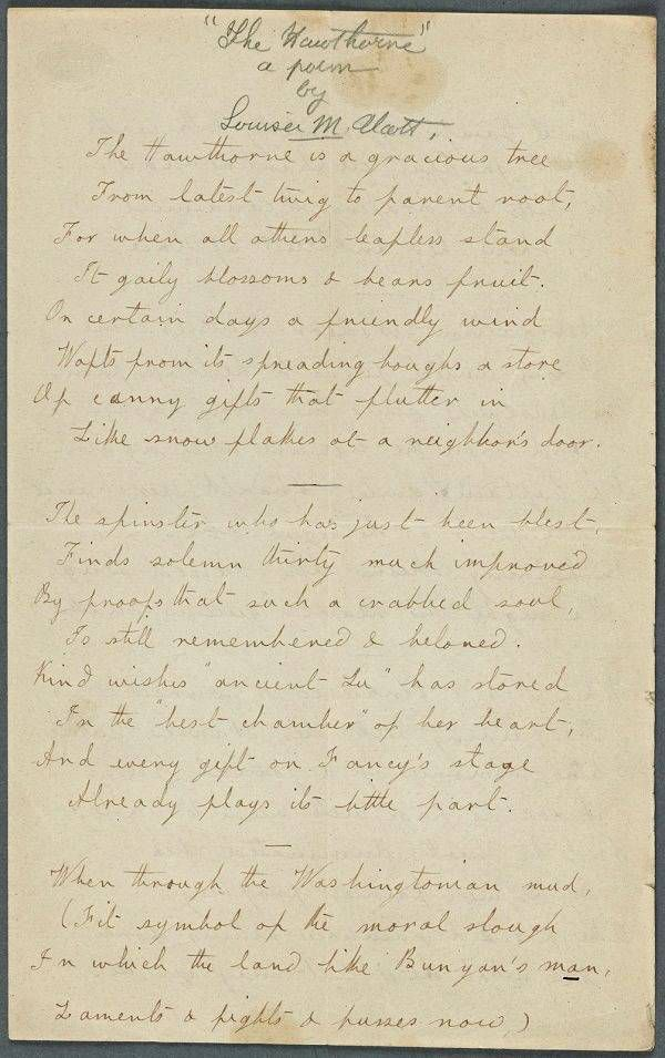 A poem by Louisa May Alcott called The Hawthorne.