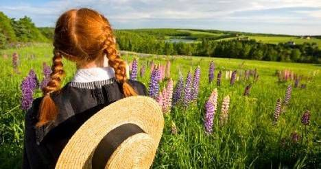 Anne Shirley looking out over flowers and fields artwork