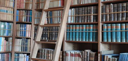 A buyers guide to the most beautiful library ladders solutioingenieria