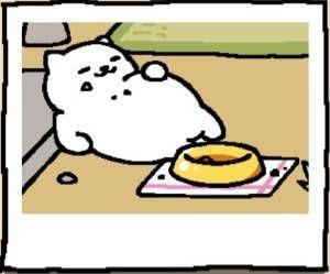 Neko Atsume Cat Tubbs