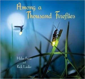 Among a Thousand Fireflies book by Helen Frost