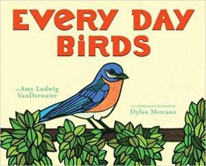Every Day Birds book by Amy Ludwig VanDerwater