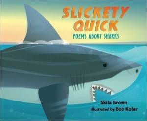 Slickety Quick book by Skila Brown