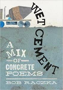 Wet Cement book by Bob Raczka