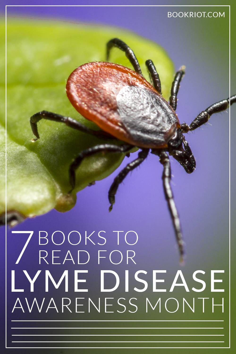 Tick season is here! Read up on Lyme disease and keep your family safe!