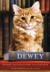 cover of dewey by vicki mryon
