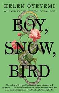 boy snow bird book cover helen oyeyomi