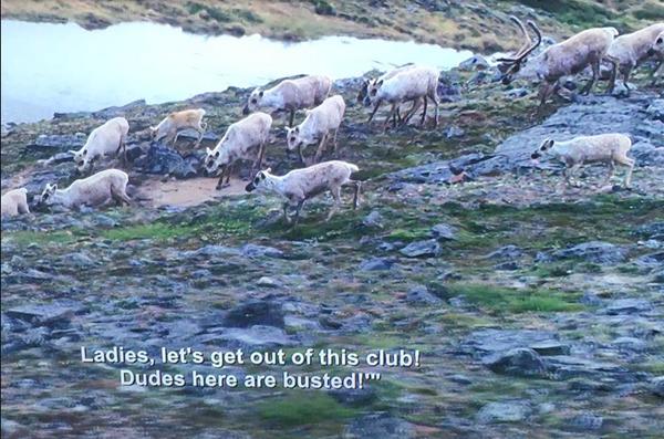 BenMeiri84 image of Netflix glitch Master of None caption on BBC documentary