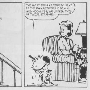 Modern Romance & Calvin and Hobbes Mashup 3