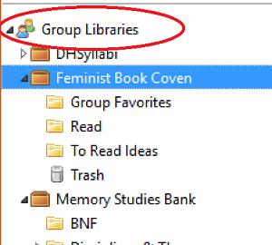 Zotero Group Libraries
