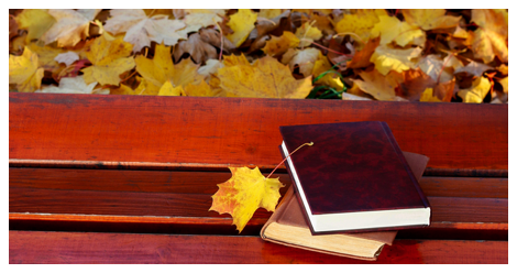 7 Long Books to Read this Fall