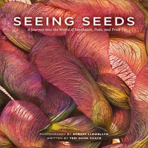 Seeing Seeds by Teri Dunn Chace & Robert Llewellyn