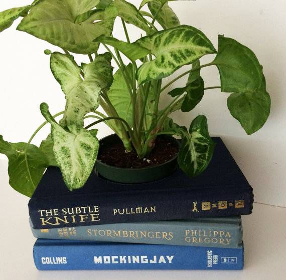 ya-book-planter