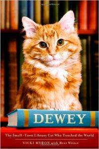 dewey book cover