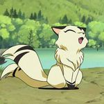 Image of Kirara from Inuyasha by Rumiko Takahashi