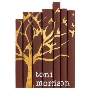 toni-morrison-book-collection