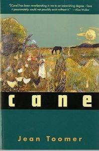 cane-cover