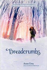 Cover of Breadcrumbs by Anne Ursu
